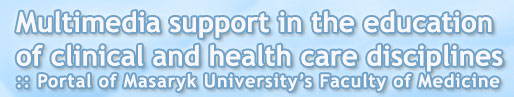 Multimedia support in the education of clinical and health care disciplines