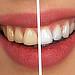 Vědecká příprava pro Zubní lékařství